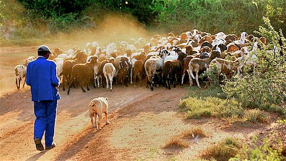 A rural valley