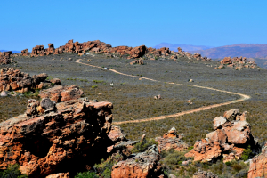 The road to the Stadsaal caves and rock formations, Cederberg.