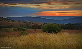 Magaliesberg sunset